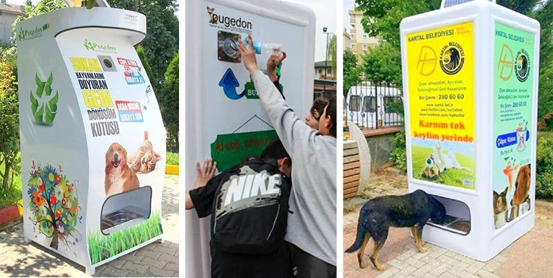 Recycling Machines in Turkey Provide Food for Stray Animals When a Bottle is Deposited