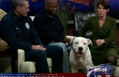 Rescued dog Max moments before anchorwoman Kyle Dyer leaned toward him and he bit her lip.