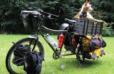 how to ride a bike with a dog in a basket