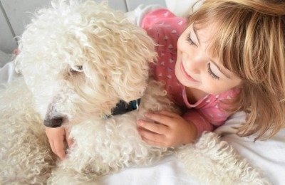 foster children and dogs