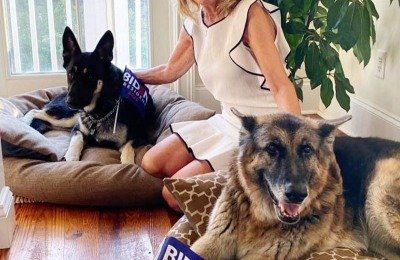 Dr. Jill Biden and the Bidens' Dogs, Champ and Major