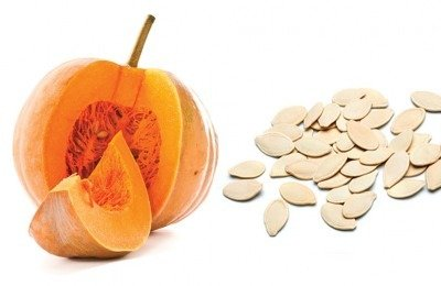 can dogs eat pumpkin and pumpkin seeds?