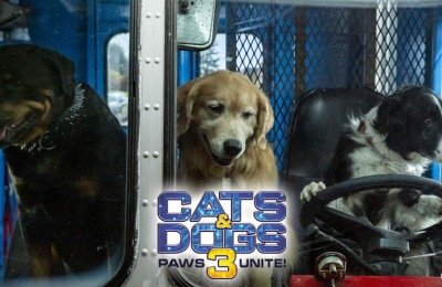 cats & dogs 3 digital movie giveaway