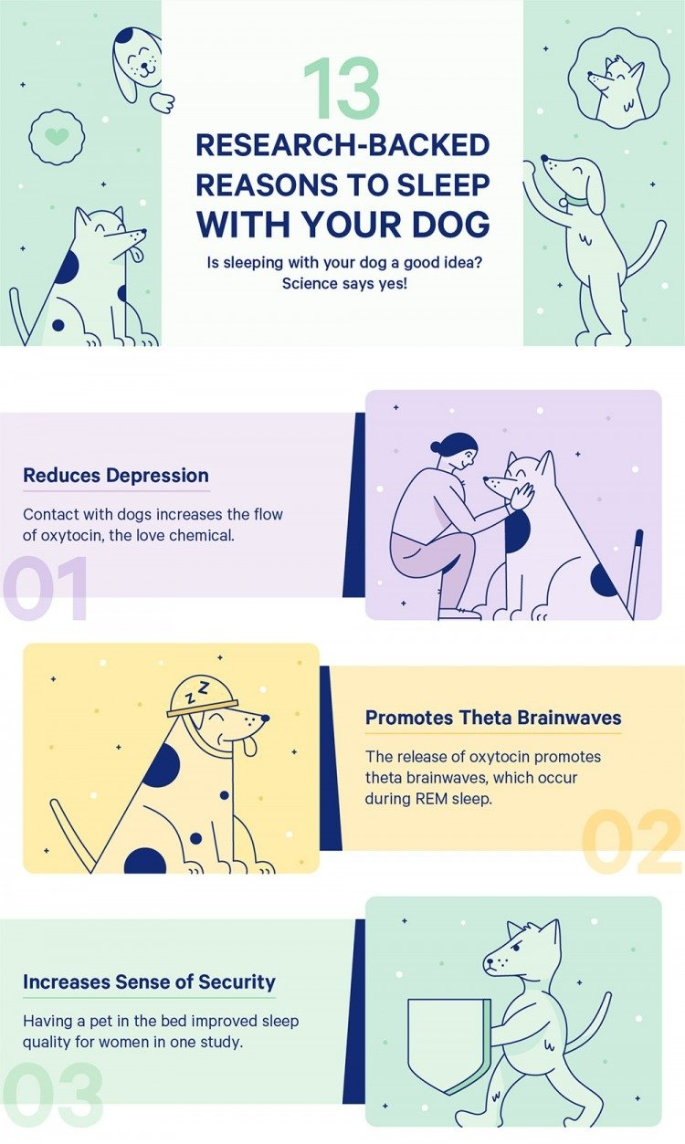 13 RESEARCH-BACKED REASON TO SLEEP WITH YOU DOG