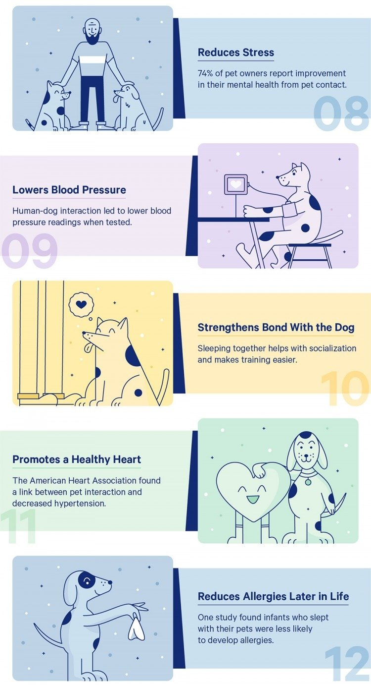 sleeping with dog REDUCES STRESS