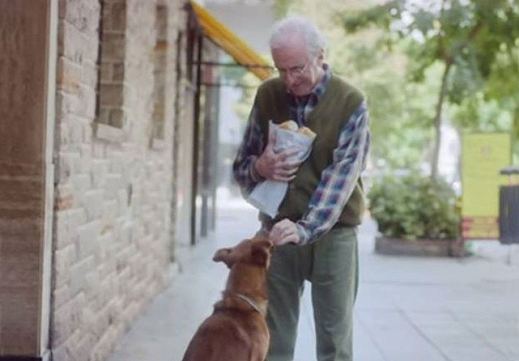 """The FATH (Fundación Argentina de Trasplante Hepático) and DDB Argentina present """"The man and the dog"""", a story of friendship that seeks to inspire people to become organ donors."""