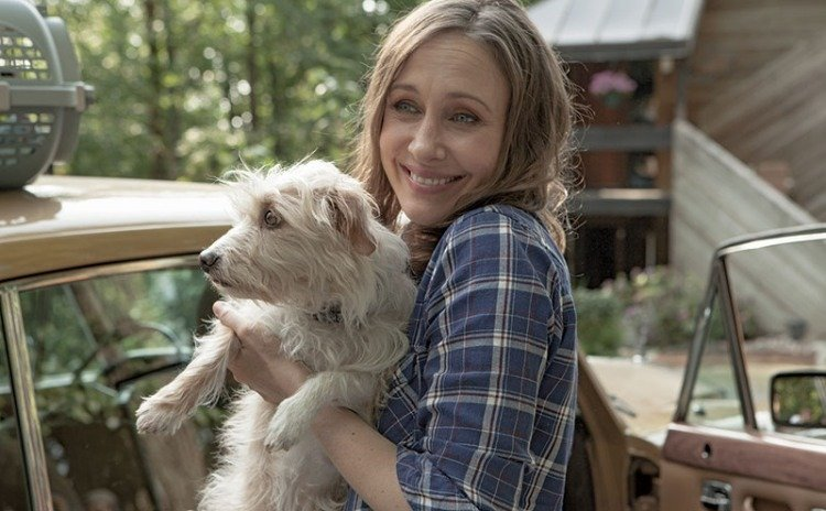 "A scene from the new film ""Boundaries"" starring Vera Farmiga and a supporting cast of rescue dogs."